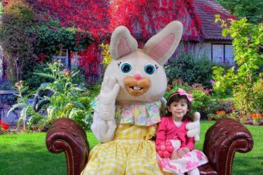 Easter Bunny Costume Character