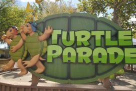Turtle Parade Kiddie Ride