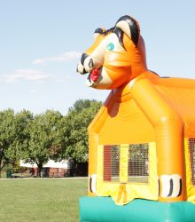Cat Bounce House